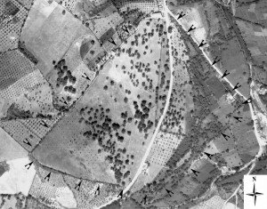 Indication of the probable town wall delimitation on historical aerial photograph (Corsi - Vermeulen 2007)